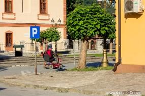 Об инвалидах в Сербии заботятся