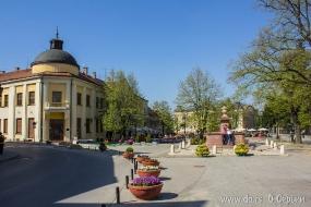 Площадь Бранка Радичевича