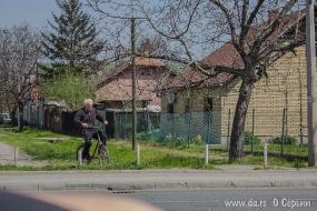 Сербский пенсионер
