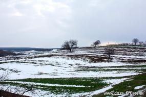 Поля под снегом