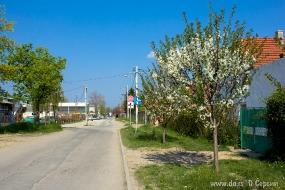 Деревенская улочка