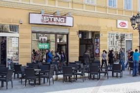 Магазин Sting