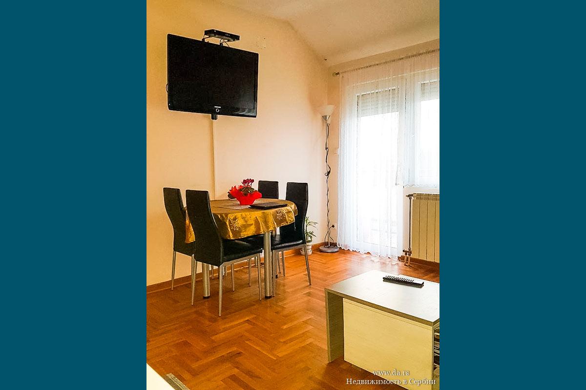 Квартира в белграде купить марианские лазни недвижимость купить