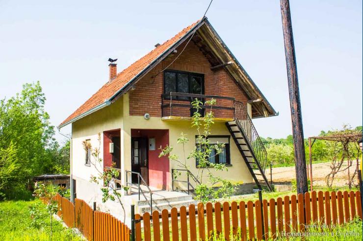 Небольшой дом с большим участком и садом в пригороде Лозницы