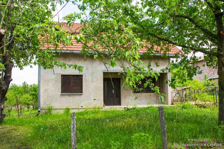 Дом рядом с сосновым лесом в поселке недалеко от города Лозница
