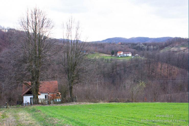 Небольшой дом с большим участком в пригороде Лозницы