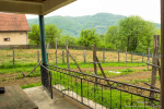 0341, Отличный недорогой дом с малинником и видами на горы в Лознице