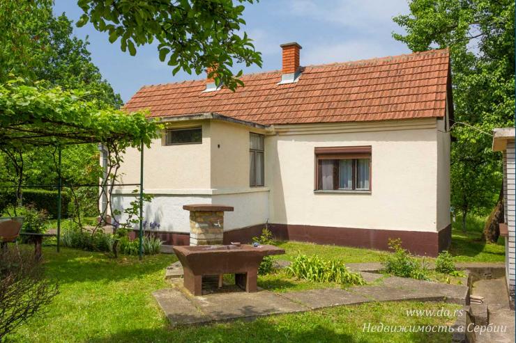 Два дома на участке 1,3 га с садом в Лознице